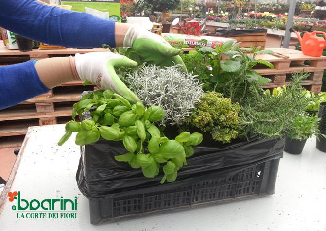 Urban Farm: coltivare l\'orto sul balcone riciclando materiali ...