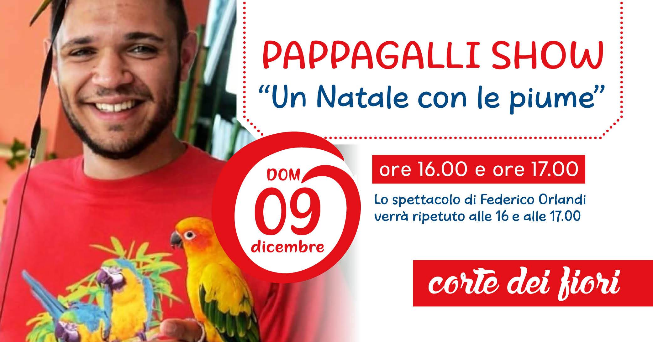 Pappagalli Show