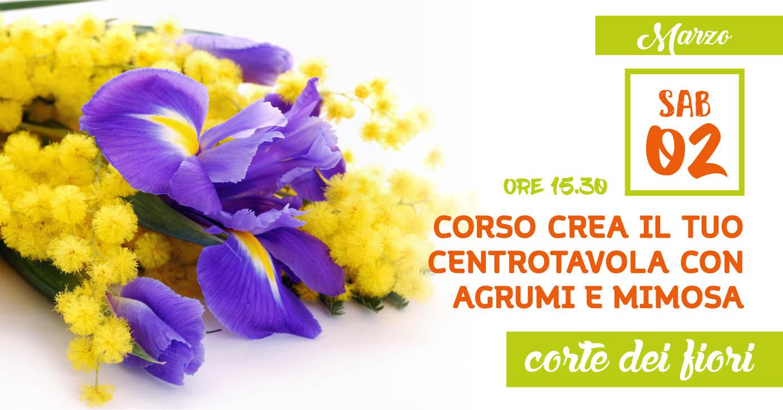 Corso Agrumi Mimosa