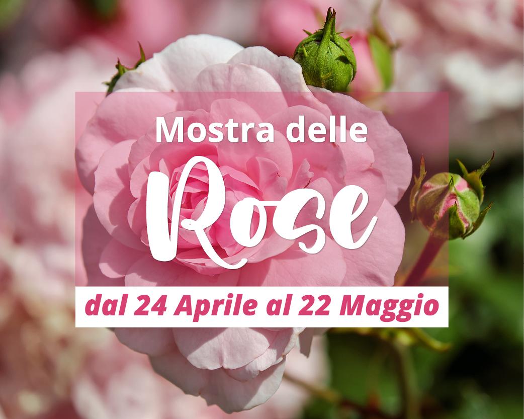 Mostra delle rose